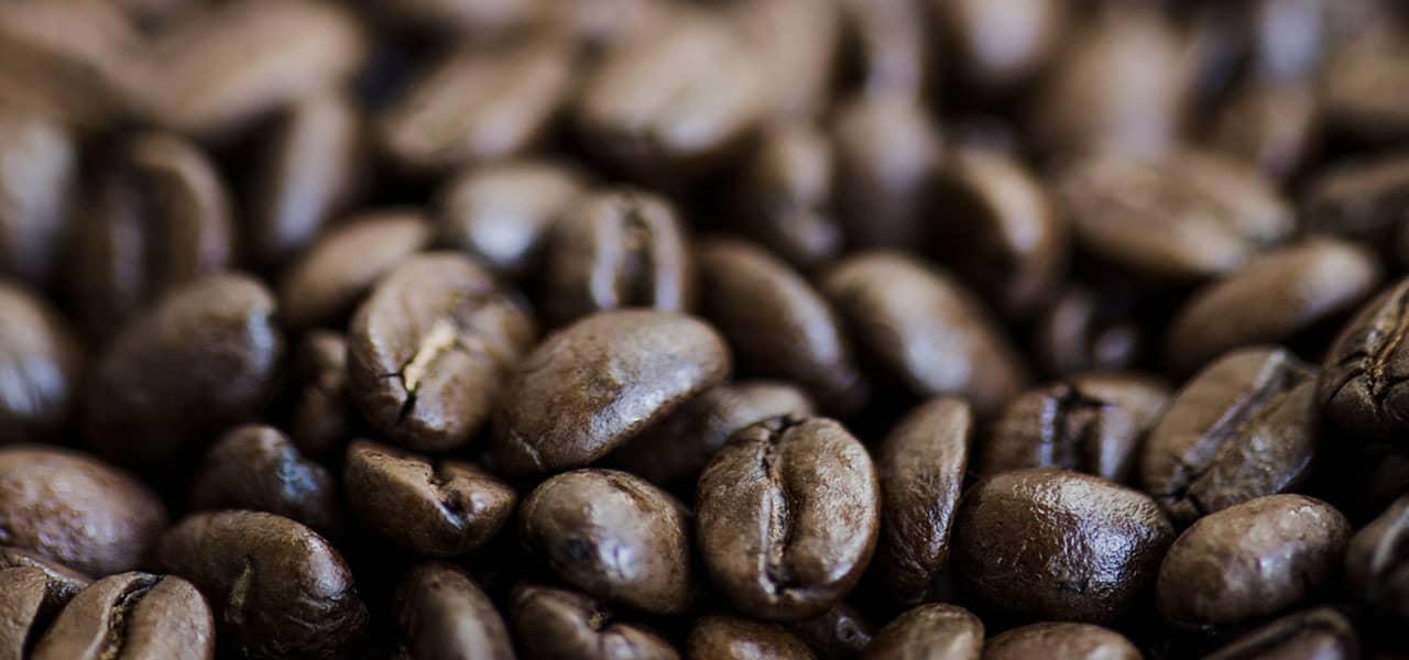 coffee guide 1 - regulamin