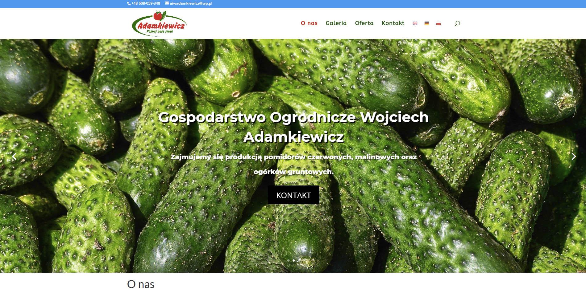adamkiewicz - Nasze realizacje